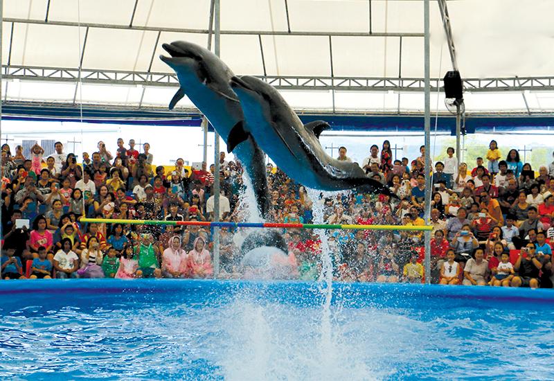 Dolphinarium de Dubaï