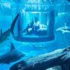 Aquarium (Dubai Mall)